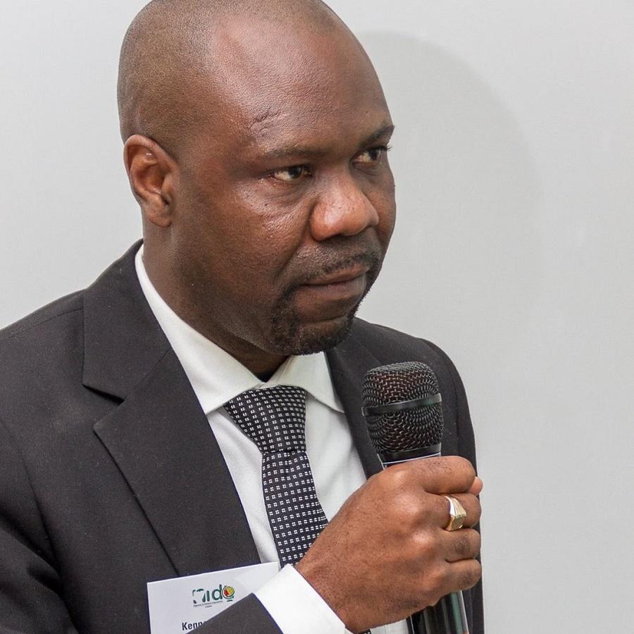 Mr Kenneth Gbandi, the Chairman of Nigerians in Diaspora Organisation Europe (NIDOE)
