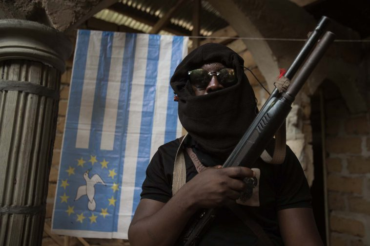 Cameroon urged to cease fire