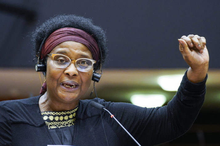 Afro-German MEP faces police brutality