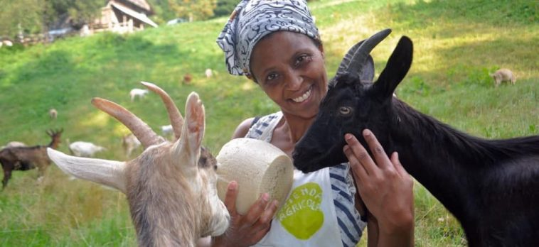 Agitu Ideo Gudeta, Ethiopian refugee and symbol of integration rapped killed in Italy