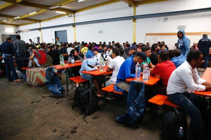 asylum-seekers in Germany