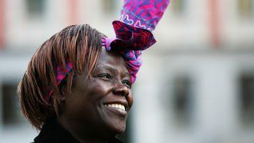 Wangari Maathai: International School