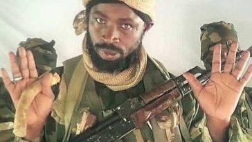 Boko Haram Abubakar Shekau dead